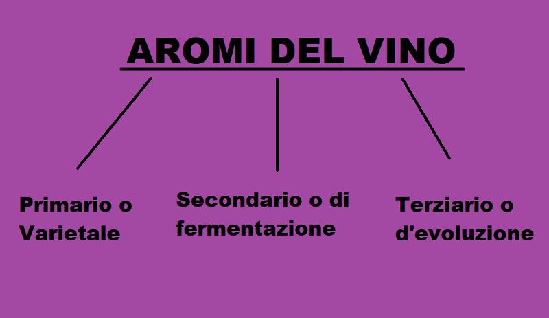 Gli Aromi del Vino