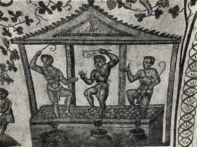 La storia del vino: scoperta e diffusione