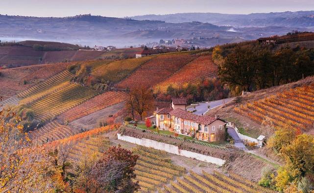 Azienda vitivinicola Rizieri